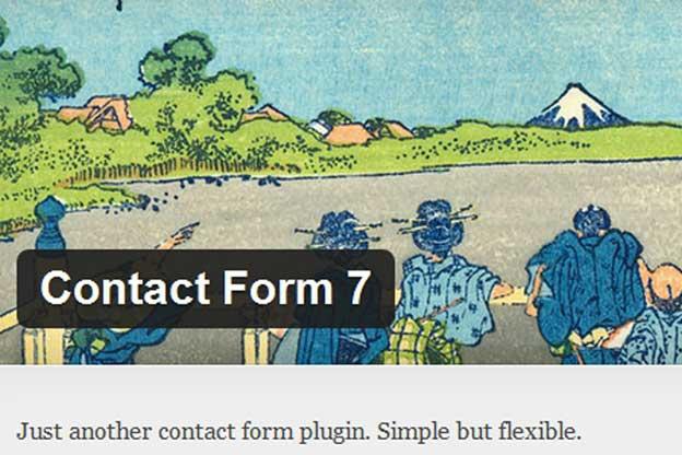 Etiquetas especiales Contact Form 7